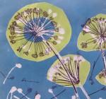 Allium Umbels II-Monoprint