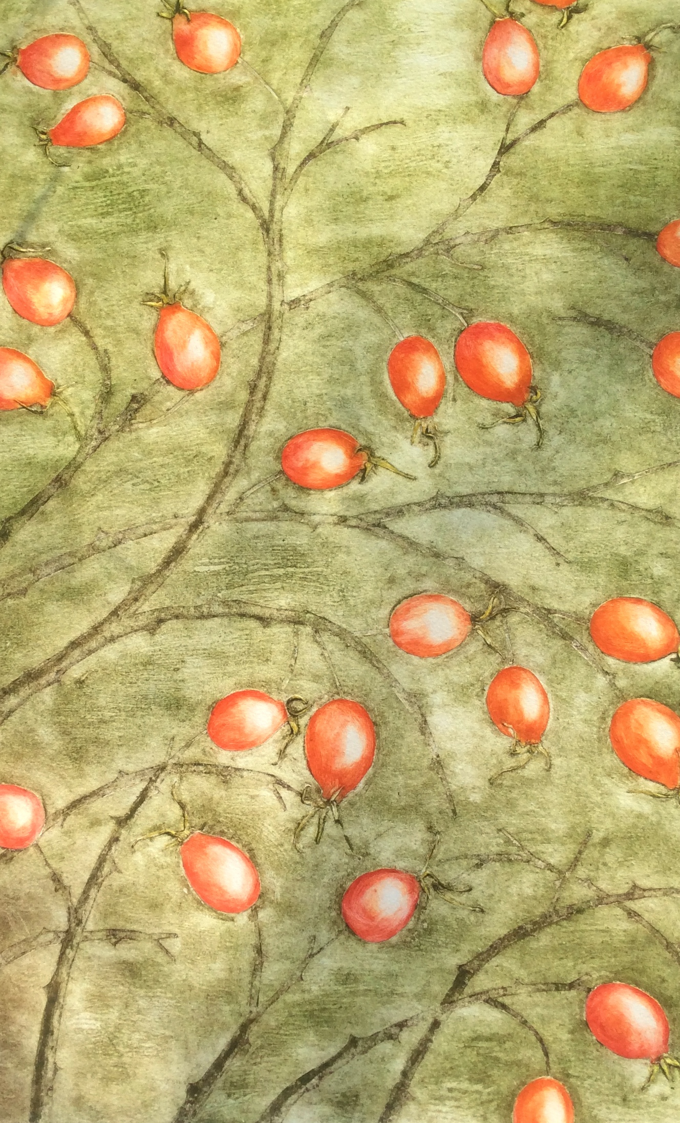 Rose Hips Collagraph