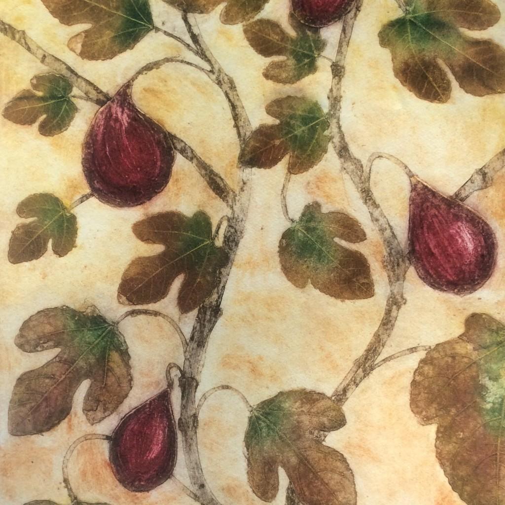 Ficus Caricus Collagraph